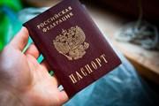Перевод  паспорта (простой)