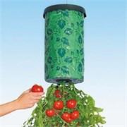"""Приспособление для выращивания культур """"Плантация"""" (Tomato planter)"""