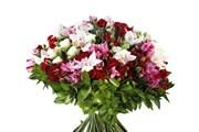 Роза кустовая, Альстромерия, Орхидея, Упаковка