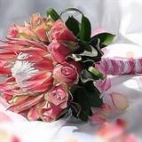Протея, Розы, «Живая ручка»
