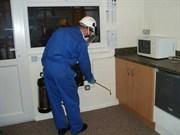Уничтожение тараканов 1 комнатная