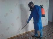 Уничтожение тараканов 2 комнатная
