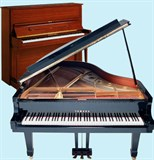 Чистка музыкального инструмента