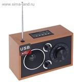 Радиоприемник БЗРП РП-301, 220Вт, USB, SD 1106209