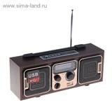 Радиоприемник БЗРП РП-308, 220Вт, USB, SD, стереозвук 1144560
