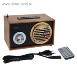 Радиоприемник БЗРП РП-316, 220Вт, 2 динамика, расширенный УКВ, USB, SD   1163465